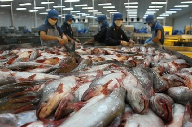 Exportaciones acuicolas vietnamitas enfrentan dificultades para cumplir objetivo trazado este ano hinh anh 1