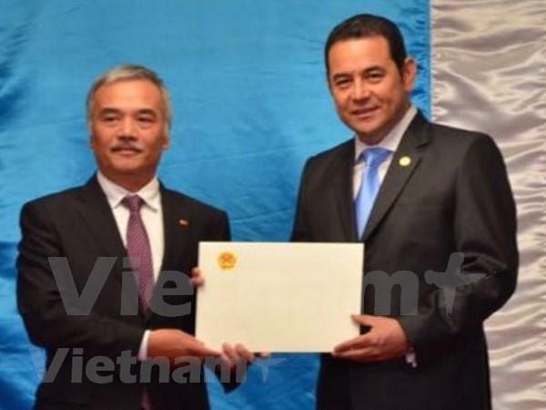 Presidente guatemalteco aprecia desarrollo sostenible de Vietnam hinh anh 1