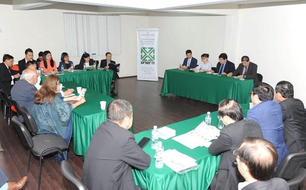 Empresas vietnamitas estudian mercado de Mexico hinh anh 1