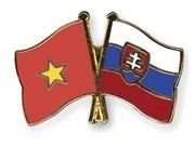 Conmemoran en Ciudad Ho Chi Minh aniversario 26 del Dia de Constitucion de Eslovaquia hinh anh 1