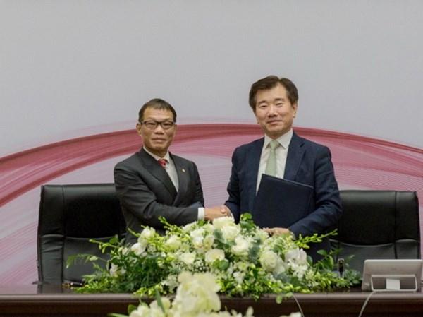 Grupos de Vietnam y Corea del Sur entablan cooperacion para produccion de pilas hinh anh 1