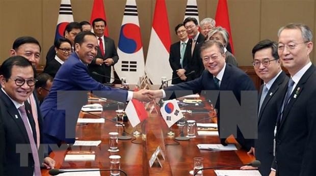 Corea del Sur e Indonesia prometen esfuerzos para reforzar su asociacion estrategica hinh anh 1