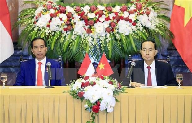 Vietnam e Indonesia firman diversos documentos de cooperacion hinh anh 1