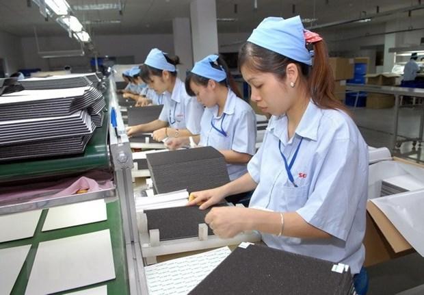 Optimistas jovenes en ASEAN sobre efectos de tecnologia a empleo hinh anh 1