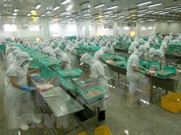 Estados Unidos reduce el impuesto antidumping al camaron vietnamita hinh anh 1
