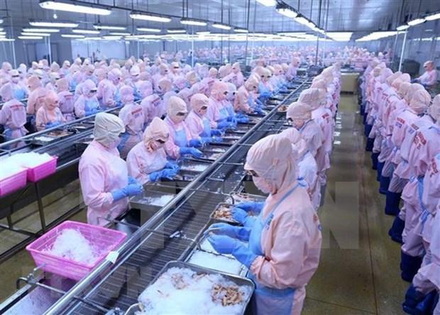 PNUD sugiere a Vietnam promover desarrollo del sector privado hinh anh 1