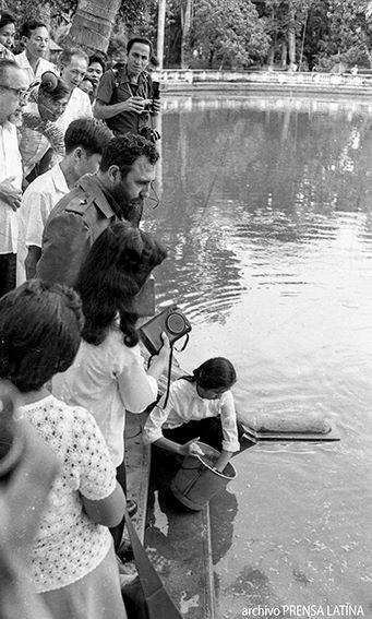 Fidel y Ho Chi Minh, un encuentro que ni la muerte pudo impedir hinh anh 6