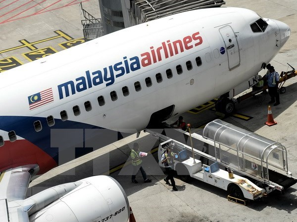 Avion de Malaysia Airlines vuelve al aeropuerto de salida por fallo tecnico hinh anh 1