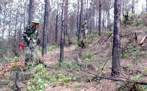 Vietnam y Corea del Sur cooperan para aliviar secuelas de bombas y minas de guerra hinh anh 1