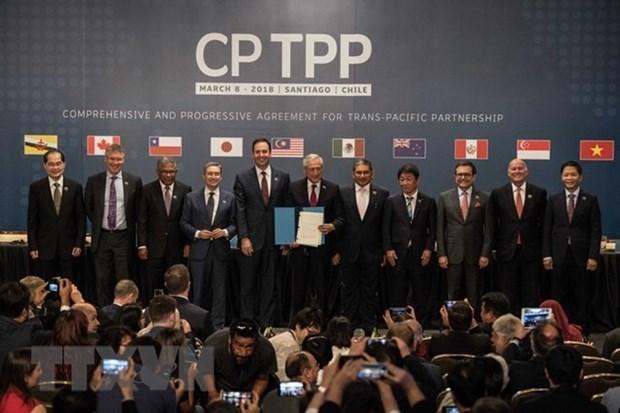 Japon y Chile acordaron impulsar cooperacion en despliegue del CPTPP hinh anh 1