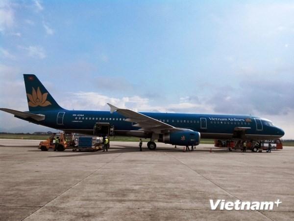 Vietnam Airlines abrira ruta directa Da Nang- Osaka hinh anh 1