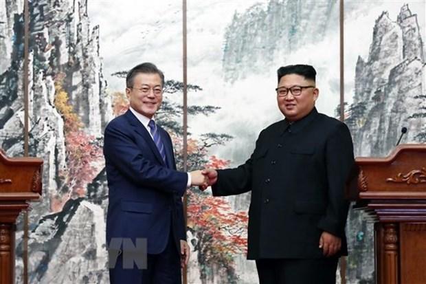Vietnam saluda los resultados de la cumbre intercoreana hinh anh 1