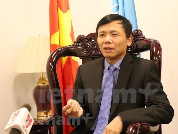 Vietnam es un miembro activo y responsable de las Naciones Unidas, sostiene embajador hinh anh 1