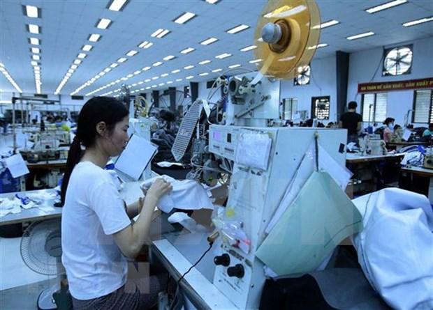 Exportacion de confecciones textiles de Vietnam a Estados Unidos reporta senales positivas hinh anh 1