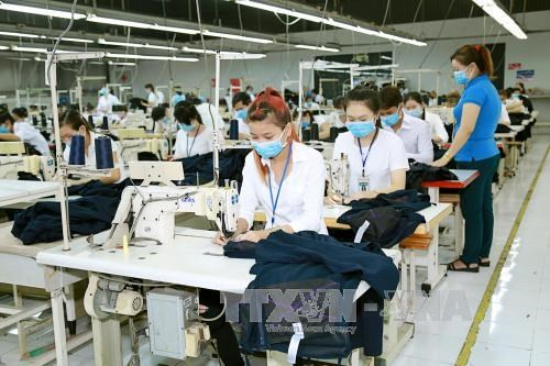 Dialogo busca aumentar productividad laboral sostenible en Vietnam hinh anh 1
