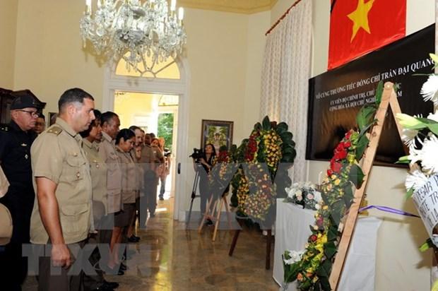 Presidente Tran Dai Quang, un entranable amigo de Cuba hinh anh 1