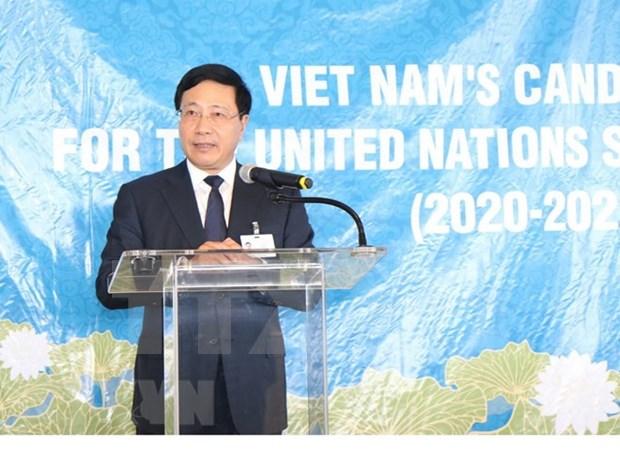 Vietnam convoca a apoyo de paises a su candidatura en ONU hinh anh 1
