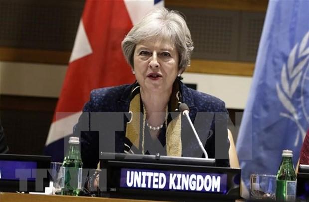 Reino Unido desea fortalecer relaciones con ASEAN tras Brexit hinh anh 1