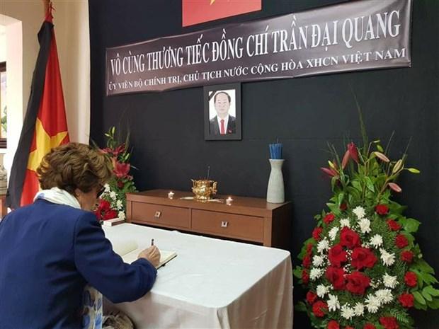 Rinden homenaje a presidente de Vietnam Tran Dai Quang en Chile hinh anh 2