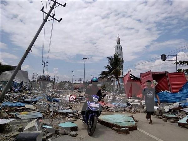 Registran al menos 384 muertos por terremoto y tsunami en Indonesia hinh anh 1