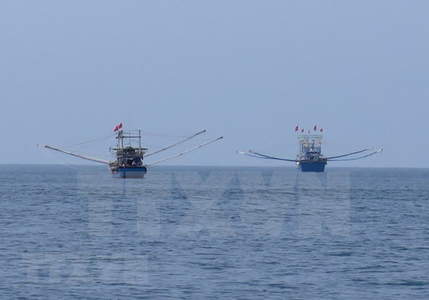 Vietnam perfecciona sistema legal de gestion costera tras 10 anos de Estrategia Maritima hinh anh 1