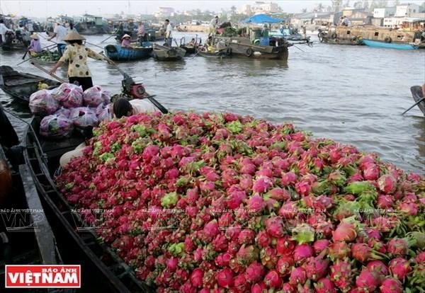 Indonesia promueve cooperacion con provincia vietnamita de Can Tho hinh anh 1
