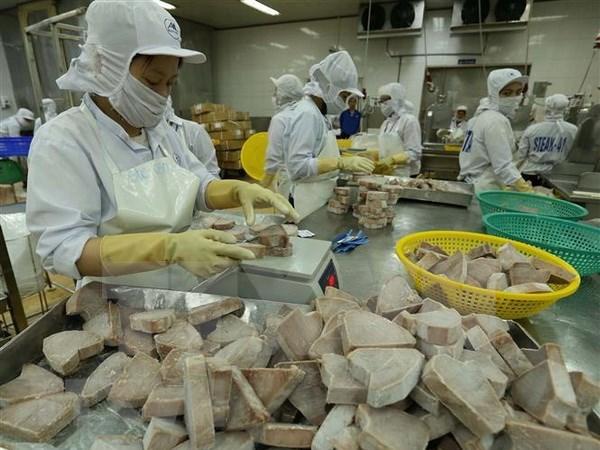 Exportaciones acuicolas de Vietnam podran alcanzar nueve mil millones de dolares en 2018 hinh anh 1