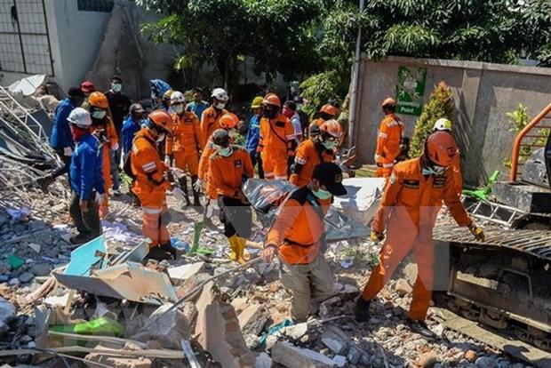 Se eleva a mil 407 numero de falllecidos por terremoto y tsunami en Indonesia  hinh anh 1