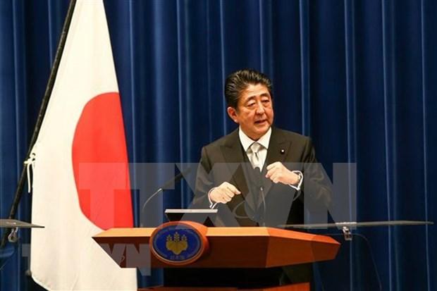 Primer ministro Shinzo Abe presidira Cumbre Mekong- Japon hinh anh 1