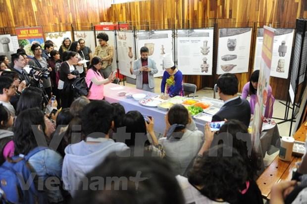 Promueven cultura vietnamita en Mexico hinh anh 2