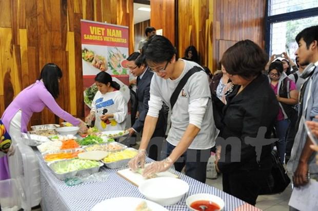 Promueven cultura vietnamita en Mexico hinh anh 1