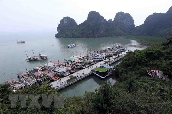 Provincia vietnamita de Quang Ninh prioriza el progreso de la economia maritima hinh anh 1