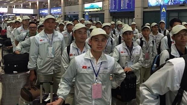 Mas de 100 mil trabajadores vietnamitas laboran en el exterior hinh anh 1