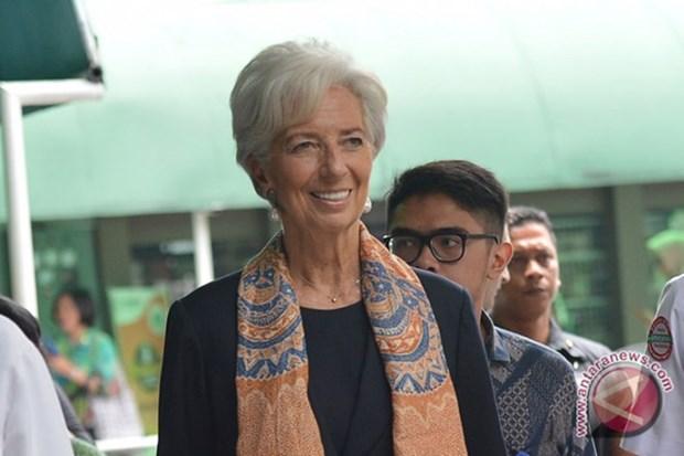 Indonesia posee estabilidad economica y no precisa apoyo del FMI, afirma su directora hinh anh 1
