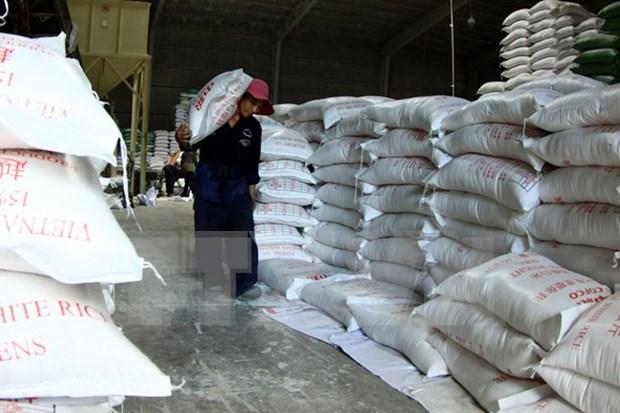 Vietnam ingresa dos mil 500 millones de dolares por la venta de arroz en nueve meses hinh anh 1