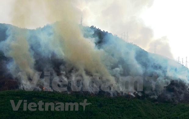 Vietnam activo en el cumplimiento de compromisos globales contra el cambio climatico hinh anh 1