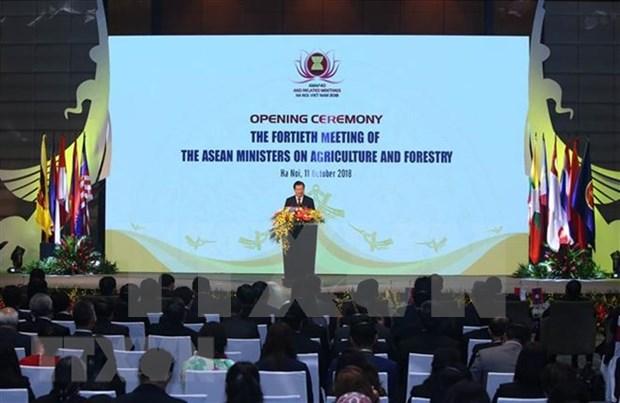 Vicepremier vietnamita exhorta a optimizar oportunidades para desarrollar agrosilvicultura en ASEAN hinh anh 1