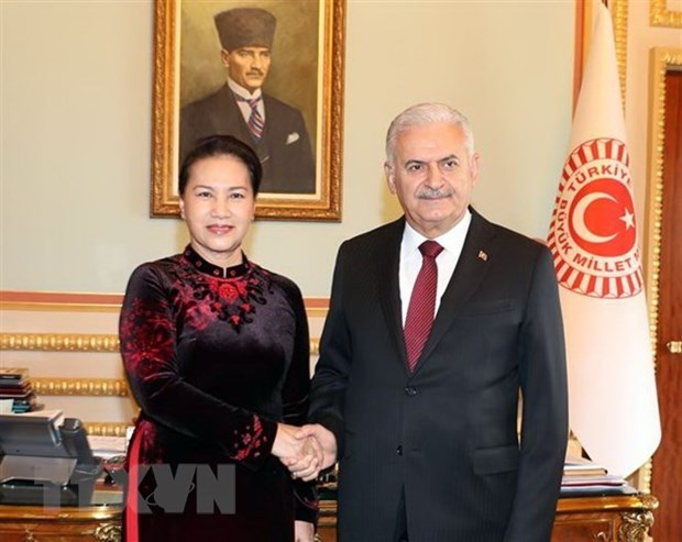 Vietnam y Turquia robustecen cooperacion legislativa hinh anh 1