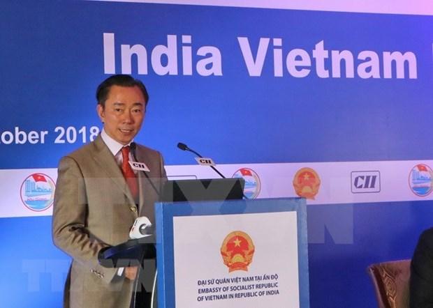 Provincia vietnamita de Hau Giang busca inversiones indias hinh anh 1