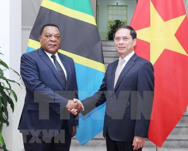 Vietnam promovera entrada de productos y servicios tanzanos en mercados de ASEAN hinh anh 1