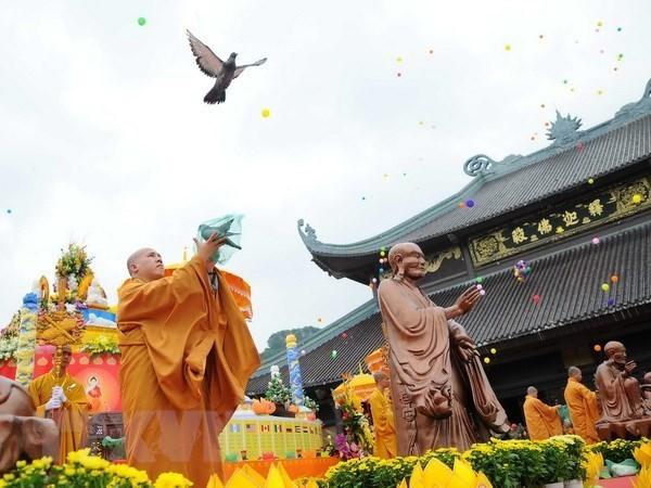 Vietnam acogera Dia de Vesak de las Naciones Unidas en 2019 hinh anh 1