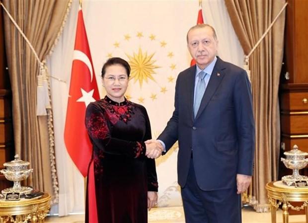 Presidente de Turquia afirma que su pais aspira a firmar TLC con Vietnam , hinh anh 1