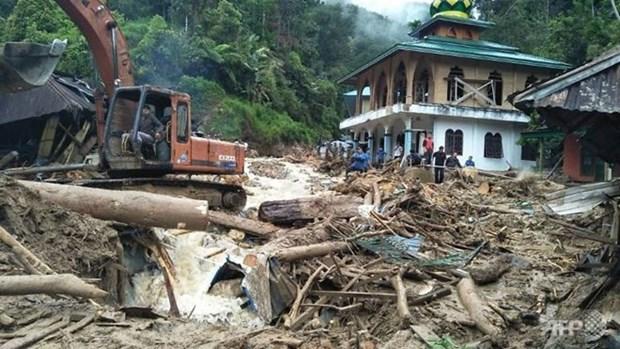 Al menos 22 muertos por deslizamientos de tierra en Indonesia hinh anh 1