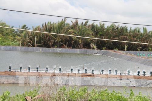 Area costera Go Cong, zona clave de exportacion de productos acuaticos de Vietnam hinh anh 1
