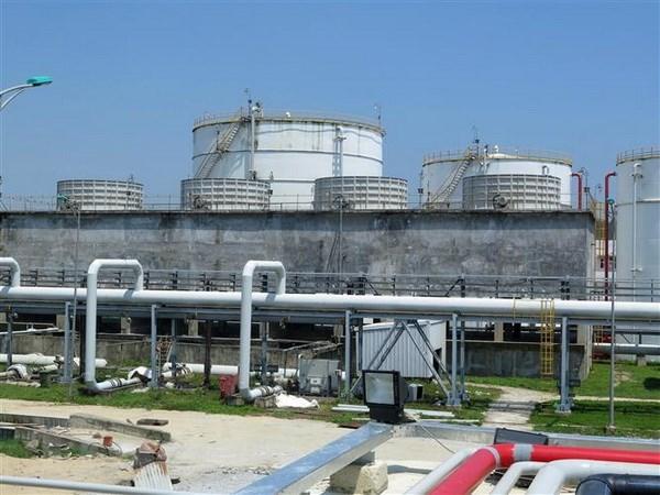 Planta biocombustible vietnamita Dung Quat reanuda sus operaciones hinh anh 1