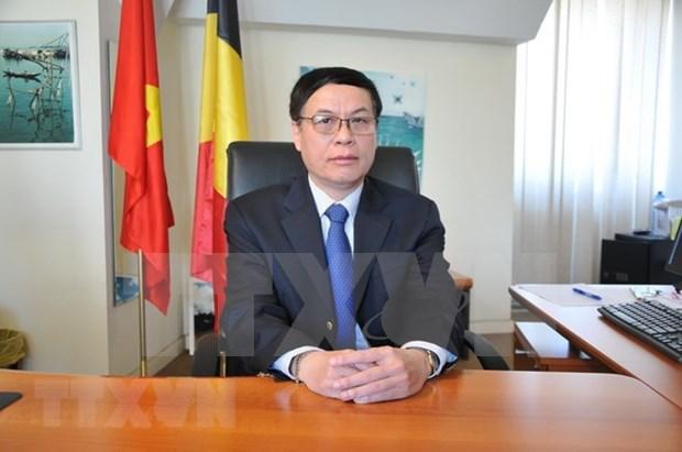 Visita de premier vietnamita a Belgica profundizara cooperacion con ese pais y la UE hinh anh 1