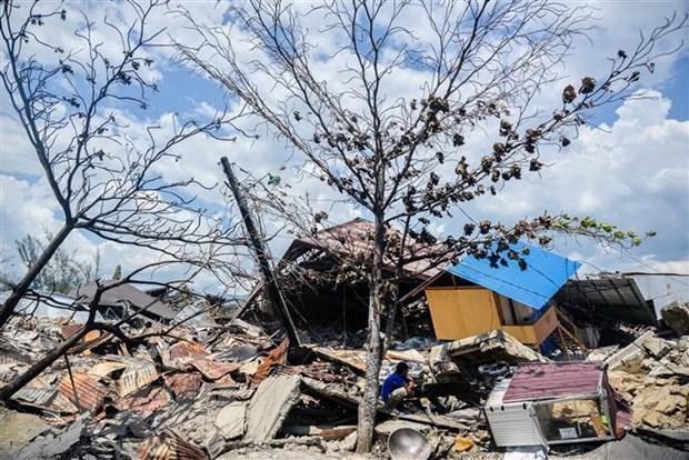 Indonesia construira nueva ciudad despues de desastres naturales hinh anh 1