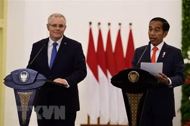 Indonesia podria suspender el Tratado de Libre Comercio con Australia hinh anh 1