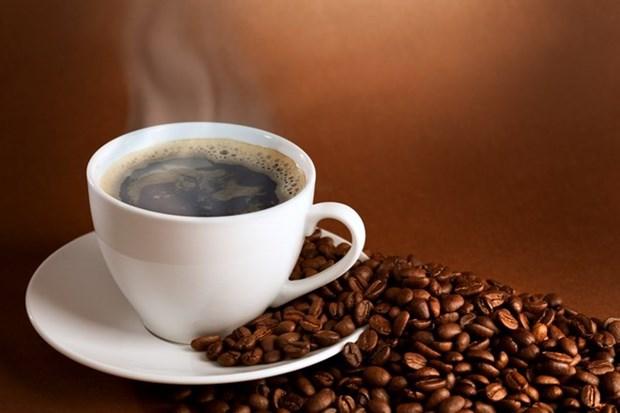 Cafe vietnamita consolida marca comercial en mercado chino hinh anh 1