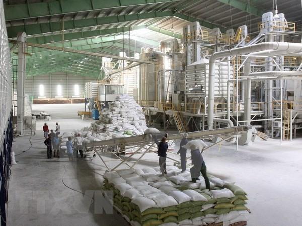 Empresas vietnamitas ganan subasta de vender arroz a Filipinas hinh anh 1